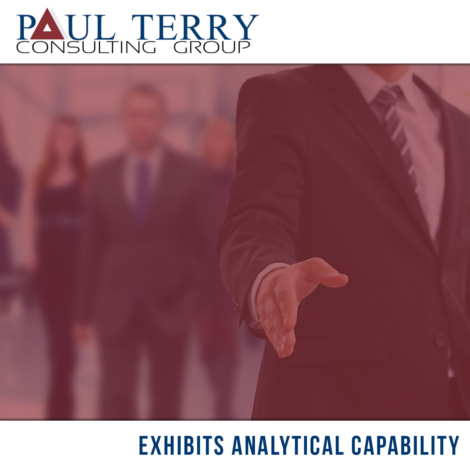 exhibits analytical capability paul terry consulting group exhibits analytical capability for web
